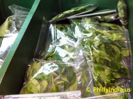 Indian Curry Leaves image © PhillyIndia.us