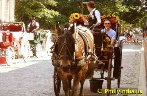 Horse drawn carriages in philly - © phillyindia.us.